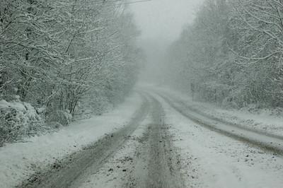Snow on 2 Feb 2009 (32)