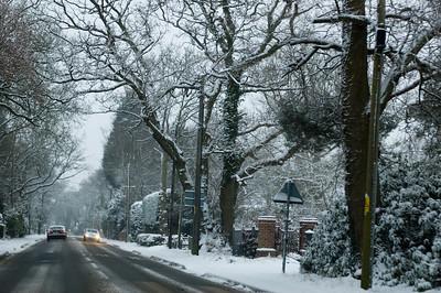 Snow on 2 Feb 2009 (16)