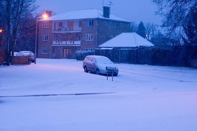 Snow on 2 Feb 2009 (2)