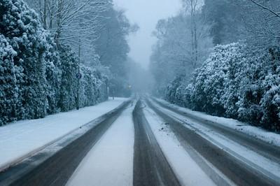 Snow on 2 Feb 2009 (10)
