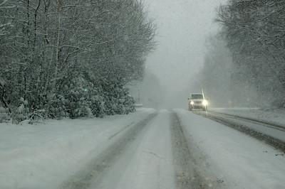 Snow on 2 Feb 2009 (31)