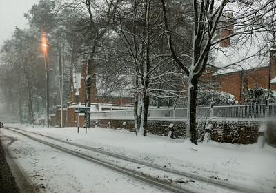 Snow on 2 Feb 2009 (26)