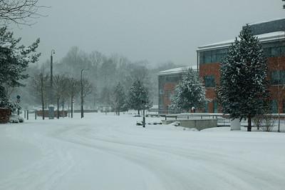 Snow on 2 Feb 2009 (44)