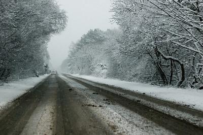 Snow on 2 Feb 2009 (22)