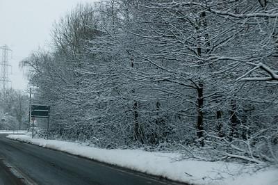 Snow on 2 Feb 2009 (17)