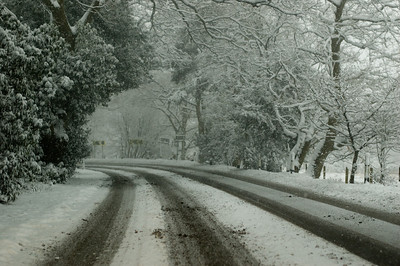 Snow on 2 Feb 2009 (29)