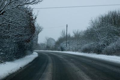 Snow on 2 Feb 2009 (15)