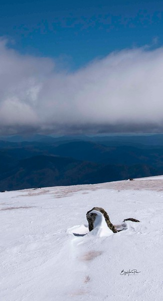 snow shoe 28.jpg