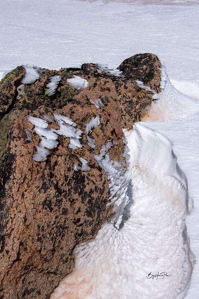 snow shoe 25.jpg