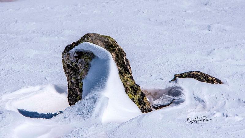 snow shoe 27jpg.jpg