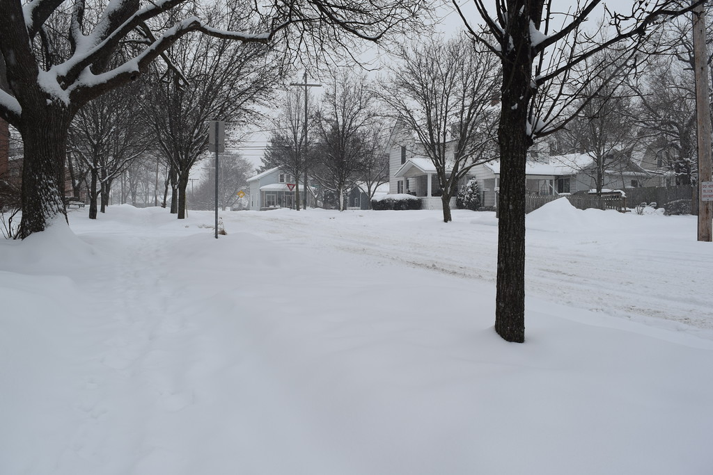 . Plymouth, Mich., in Wayne County, had about 5 inches of snow on the ground Friday afternoon. (Mark Cavitt/The Oakland Press)