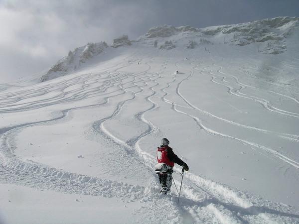 Alta, Utah (2/2008)