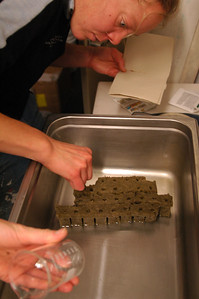 SOUTH POLE STATION, ANTARCTICA: Of course in order to have things to harvest, we must first sow our seeds. Here Adrianne goes through the meticulous process of pulling only two or three tinny seeds from the packages and placing them in the green rock wool that has been soaked with water.