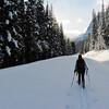 <b>18 Jan 2011</b> Megan wades through the snow to trailbreak