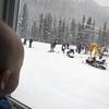 <b>15 Jan 2011</b> Finn watches the action from Goats Eye Gardens