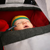 <b>25 Nov 2010</b> Fast asleep in the Chariot (3 months old)