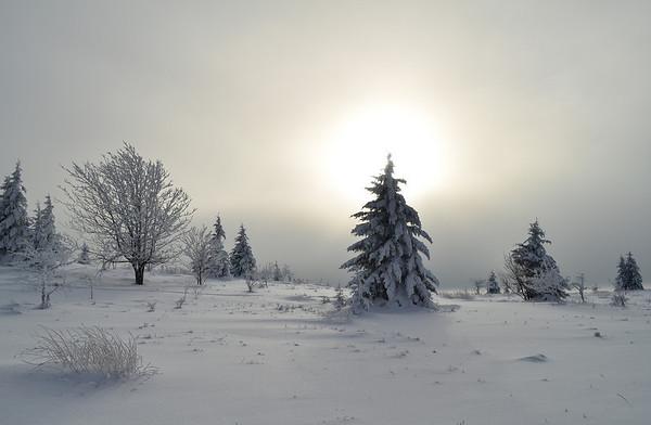 Into the Icebox, WVA (12/2010)
