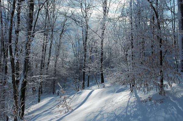Snowscapes WV,  2009-2010