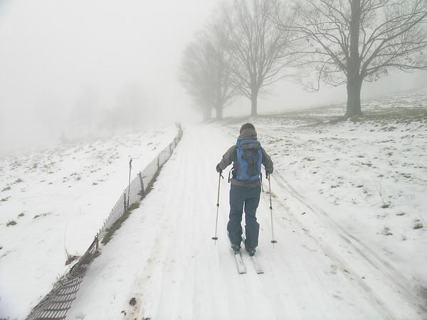 Jack Frost Surprises (12/2007)