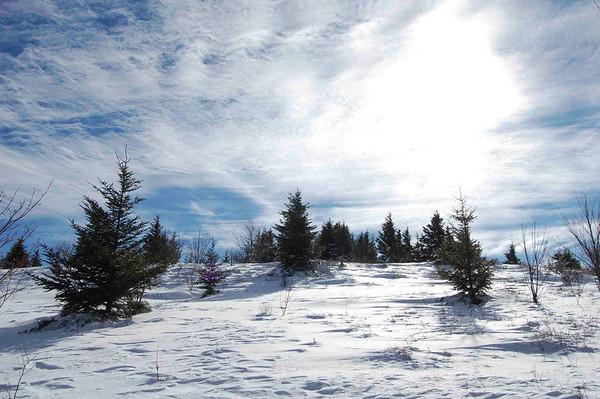 Nordic November, Whitegrass and Beyond, WV (11/2008)