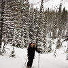 <b>19 Feb 2012</b> Burstall Pass - Kim, getting up out of the trees