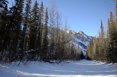 WHITE MOUNTAINS, ALASKA. Snowy creek