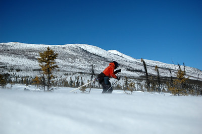 WHITE MOUNTAINS, ALASKA. Nathaniel skiing through the blowing snow (spin drift) along Cashe Mountain.