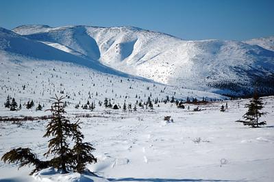 WHITE MOUNTAINS, ALASKA. Cashe Mountain Divide.