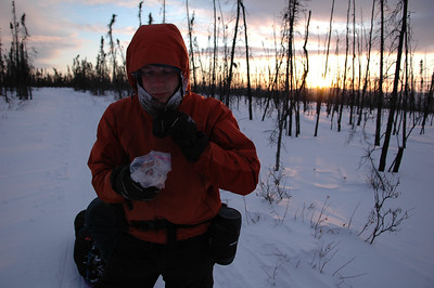 WHITE MOUNTAINS, ALASKA. Sunset snacks.
