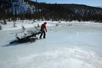 WHITE MOUNTAINS, ALASKA. Hauling firewood across the frozen lake to Windy Gap Cabin