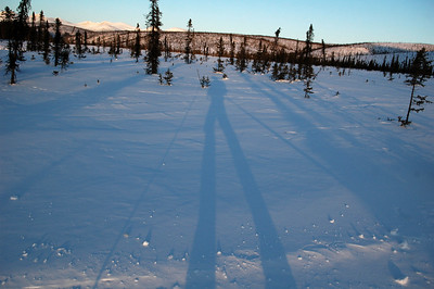 WHITE MOUNTAINS, ALASKA. Long shadows.