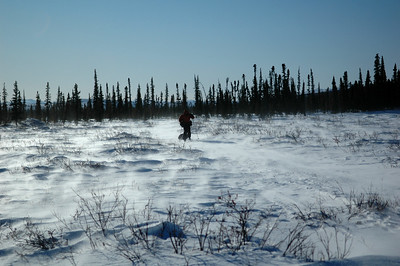 WHITE MOUNTAINS, ALASKA. Nathaniel skis through the howling wind and spin drift snow.