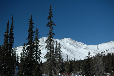 WHITE MOUNTAINS, ALASKA. Cashe Mountain Divide