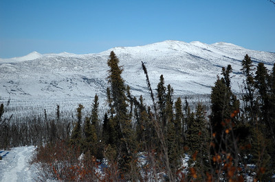 WHITE MOUNTAINS, ALASKA. Looking across the Beaver Creek valley onto the Cashe Mountain Massif.