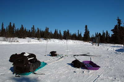 WHITE MOUNTAINS, ALASKA. Loading the sleds, ready to get on the trail at the Wickersham Dome trailhead.