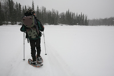 TALKEETNA, AK - Talkeetna Lakes Snowshoe Tour