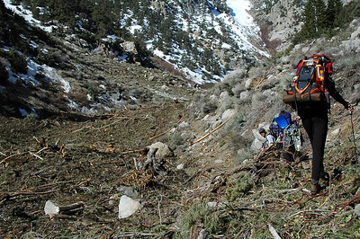 We got to witness the power of an avalanche by walking through the aftermath of destruction it left behind after the snow melted away.