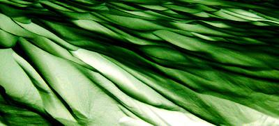 Snow 63_114 Emerald