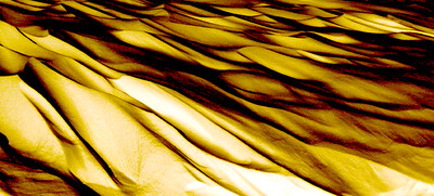 Snow 63_114 Gold