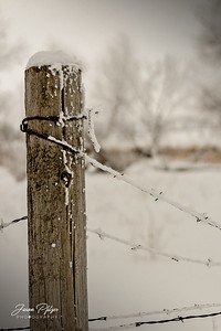 A fence post along a rural road in South Dakota. The snow was freshly fallen and covered the wire in stark contrast to the blackness of the wire. Enjoy and hold hands.