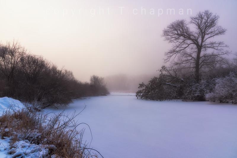 Winter Serene