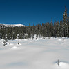 After a leisurely walk in the morning, we decided to go snowshoeing in the afternoon. The mountain was very quiet and the weather was just gorgeous!