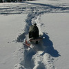 Gander learned to follow our tracks to make life a bit easier on himself.