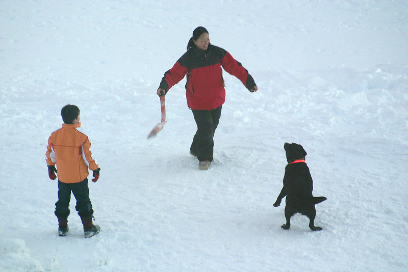 What better than a good game of fetch in the snow after a day on the mountain?