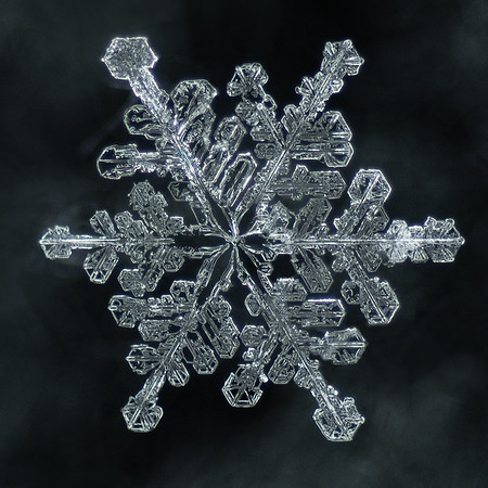 Snowflake Imperfection