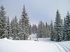 1901 Snow scenery