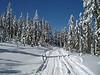 2009 Snowy trail Dandy Pass