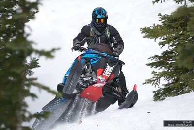 2015 Ultimate Snowmobiler
