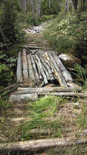 Cedar Matting Before