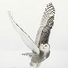 "Snowy Owl ""V"" Wings Liftoff"